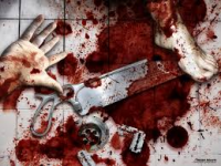 zodiac murder